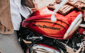 Picture motorcycle, gloves, motorcycle, Tank, davidson, Tank, gloves, hyler, Davidson, Heiler, hayler Davidson, hyler davidson