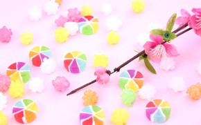 Picture flowers, candy, Lollipops