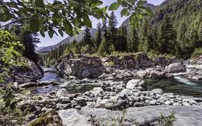 Picture River, Stones, Ate
