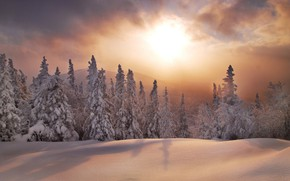 Picture winter, forest, snow, sunset, ate, the snow, Russia, South Ural, The Ridge Urenga