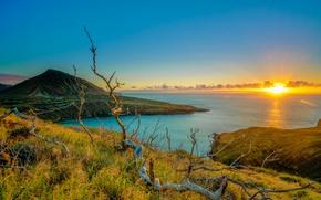Picture sea, the sky, the sun, tropics, dawn, coast, horizon, Hawaii, hill