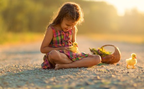 Picture flowers, basket, dress, girl, ducklings, child, Chicks