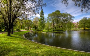 Picture greens, grass, trees, pond, Park, Saint Petersburg, Russia, Yusupovsky Garden