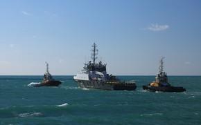 Picture sea, tugs, Sevastopol