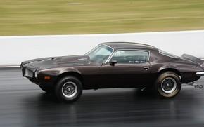 Picture speed, muscle car, pontiac, Firebird