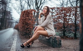 Picture road, autumn, girl, trees, makeup, figure, dress, hairstyle, shoes, brown hair, legs, beauty, sitting, the …