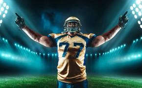 Wallpaper field, grass, pose, sport, t-shirt, gloves, helmet, athlete, American football, male, uniform, stadium, floodlight, player