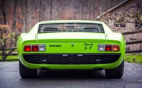 Picture Auto, Lamborghini, Retro, Green, Machine, 1969, Car, Supercar, Miura, Supercar, Back, Lamborghini Miura, Green, Italian, ...