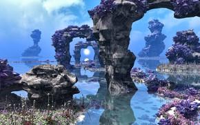 Picture water, stones, vegetation, Alien Landscape