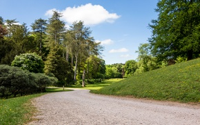 Picture road, trees, Park, spring, roads, United Kingdom, parks, Westonbirt Arboretum