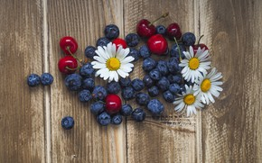 Wallpaper blueberries, wood, blueberries, chamomile, chamomiles, cherries