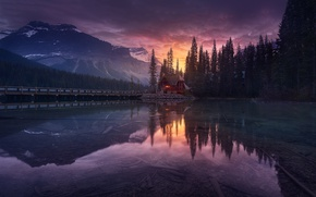 Picture forest, the sky, mountains, lake, the evening, Canada, house