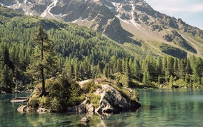 Picture trees, mountains, lake, island