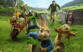 Picture pig, Peter Rabbit, Peter Rabbit, guy, rabbits, cartoon
