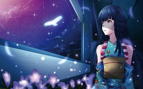 Picture girl, flowers, night