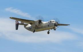 Picture tactical, deck, transport aircraft, Grumman C-2A