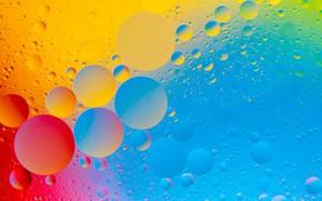 Picture water, paint, oil, bubbles