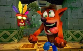 Picture game, vegetation, Crash Bandicoot N. Sane Trilogy, Crash Bandicoot Remastered