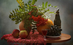 Picture branches, table, background, wine, apples, glass, bottle, berry, plate, grapes, vase, still life, red, Rowan, …