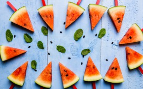 Picture leaves, Watermelon, berry, seeds, mint, slices