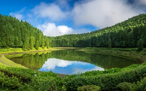 Picture greens, forest, the sky, grass, water, the sun, clouds, trees, lake, reflection, Portugal, the bushes, …