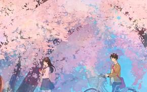 Picture spring, Sakura, students, quic