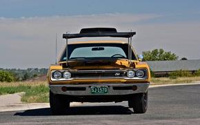 Picture 1969, Dodge, muscle car, Super Bee, Hemi