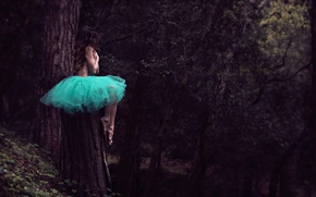 Picture forest, girl, tree