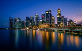 Picture night, lights, Singapore, skyline, Singapore, Marina Bay, Merlion Park
