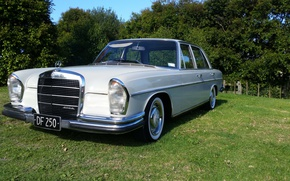 Picture Mercedes-Benz, 1967, 250_S