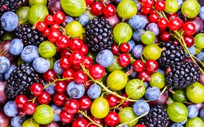 Picture berries, blueberries, currants