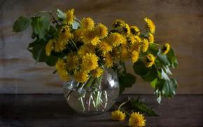 Picture flowers, bouquet, spring, vase, dandelions