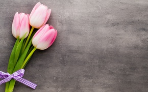 Wallpaper flowers, bouquet, tulips, pink, fresh, pink, flowers, beautiful, tulips, spring