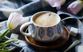 Picture Tulip, coffee, sugar