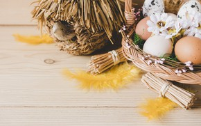 Picture bird, basket, eggs, Easter, house, Holiday