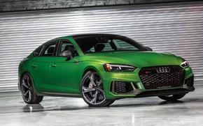 Picture Audi, sedan, RS5, Sportback, 2019