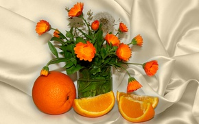 Wallpaper summer, author's photo by Elena Anikina, orange, calendula, still life, orange color, flowers