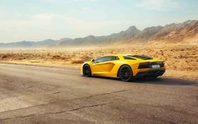 Picture Lamborghini, Dubai, Yellow, Supercar, Rear, Aventador S