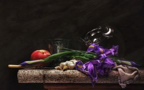 Picture knife, shell, still life, nectarine, iris