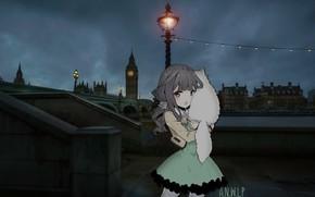 Picture sadness, cat, girl, night, bridge, London, post, anime, lantern, madskillz