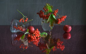 Picture autumn, glass, reflection, berries, still life, composition, Kalina