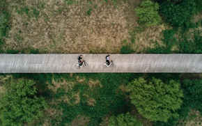 Picture trees, Park, people, landscape, Canada, track, Montreal, Canada, cyclists, the view from the top, bikes, ...