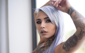 Picture look, sweetheart, piercing, tattoo, tattoo, Suicide Girls, Fishball Suicide, purple hair, the dream mother-in-law