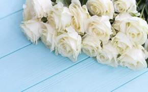 Picture flowers, roses, bouquet, white, white, buds, wood, flowers, roses