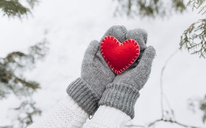 Picture winter, snow, love, heart, tree, red, love, heart, winter, mittens, snow, romantic, hands, valentine, fir …