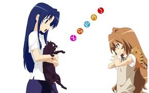 Picture anger, white background, red, Schoolgirls, black cat, tiger, art, blue hair, conflict, Toradora!, Ami Kawashima, …