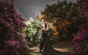 Picture girl, style, dress, the bushes, walks