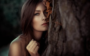 Picture look, face, tree, model, portrait, light, brown hair, shoulders, eyes, bokeh, amazing, lips, germany, hair, …