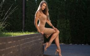 Wallpaper shoes, Dmitry Sn, makeup, beauty, brown hair, trees, posing, Margarita Chelnokova, portrait, dress, sitting, the ...