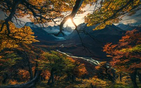Wallpaper valley, branches, trees, the sun, nature, light, autumn